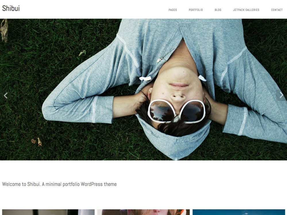 shibui wordpress theme