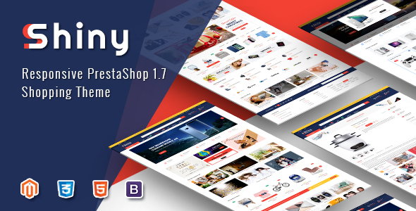 shiny magento theme